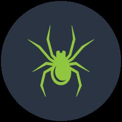 Spider Control Fairfield