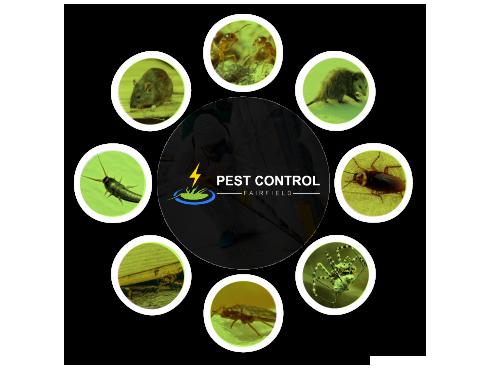 Pest Control Fairfield
